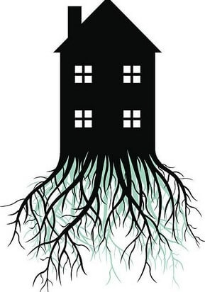 Fundament Haus mit Wurzeln